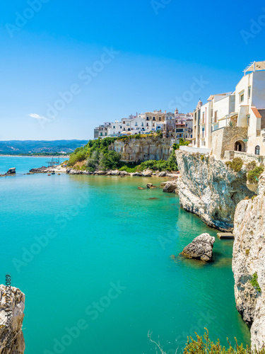 The coast and the houses of Vieste, Gargano, Puglia Canvas Print