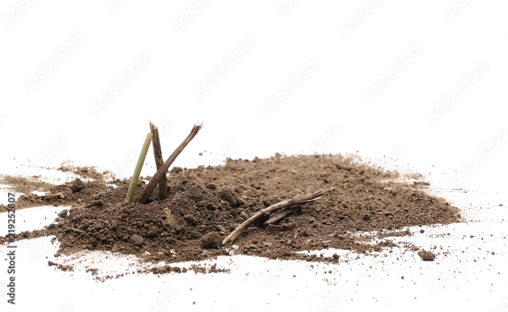 Fototapeta Dirt pile with wooden branches isolated on white background, with clipping path, side view