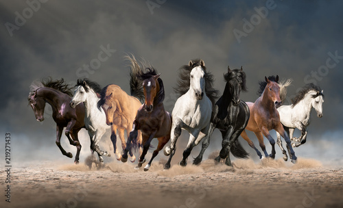 Spoed Foto op Canvas Paarden Herd of horses run forward on the sand in the dust on the sky background