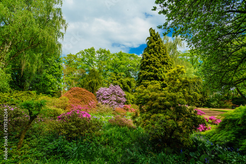 Wall Murals Khaki Beautiful garden in spring
