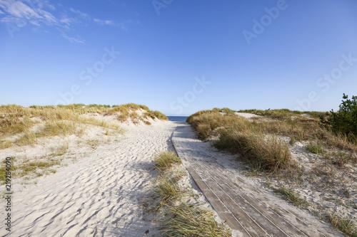 Deserted beach in Sandhammaren, Sweden. #219284090
