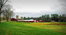 Green Fields Of Autumn / Farml...