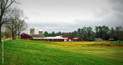 Fotografie, Obraz Green Fields of Autumn / Farmland in upstate New York in Autumn