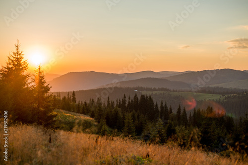 landscape mountains in europe, nature carpathian in the evening in summer