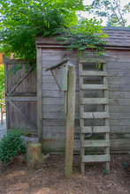 Cool Ladder Leaning Against Shed