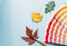 сreative Layout Of Colorful Autumn Leaves, Season Concept, Gradient Of Warm Shades Of Fall With Parts Of Leaf