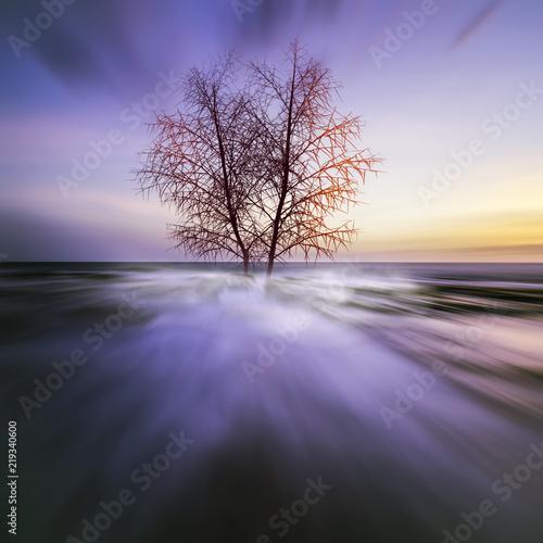 Fotobehang Aubergine 3D illustration. Beautiful landscape during sunset.
