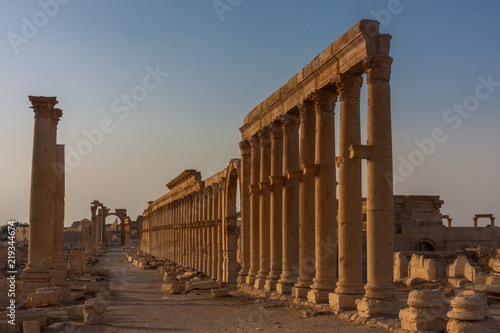 Fotomural Palmyra -  the desert ruins of the ancient Aramaic city in Syria