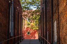 Passage Between Buildings