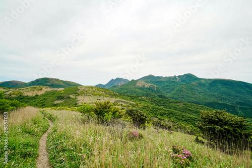 Photo 猟師岳 登山道