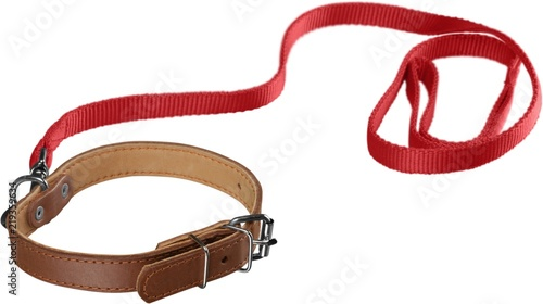 Stampa su Tela Dog Collar with Leash Isolated
