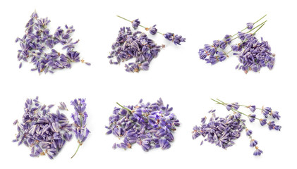 Set with aromatic fresh lavender on white background