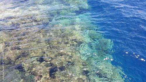 egipt-sharm-el-sheikh-rafa-koralowa