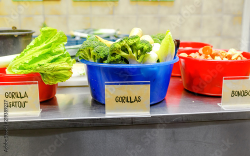 prepaired and sliced fruits and vegetables for feeding monkeys and other animals in Berlin Zoo kitchen