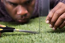 Man Cutting The Measured Grass...