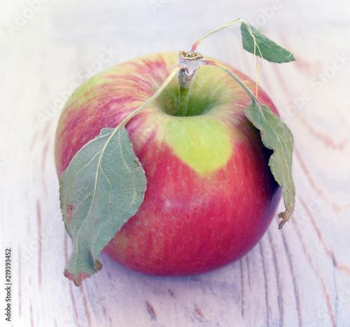Fototapeta jabłko red-apple-with-three-dried-leaves-macro