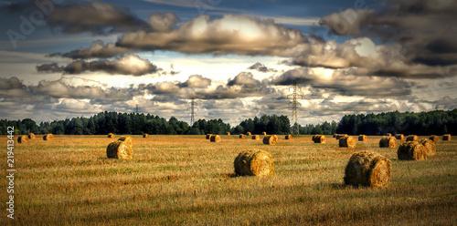 Fotografía  стога сена в поле