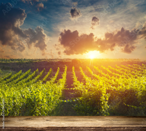 Spoed Foto op Canvas Oranje Extra wide panoramic shot of a summer vineyard shot at sunset
