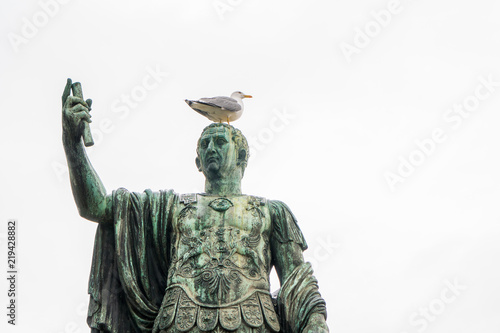 Seagull on the statue of Roman emperor Nerva, or Marcus Cocceius Nerva Caesar Au Canvas-taulu