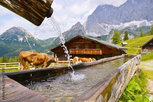 Fotografía  Neustattalm - traditional Austrian mountain village close to Dachstein, Austria