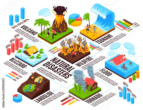 Stampa su Tela Natural Disaster Isometric Infographics