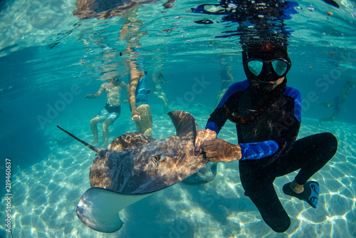 diver and sting ray in french polynesia