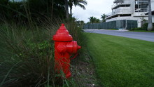 Red Fire Hydrant In A Park