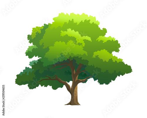 illustration tree for cartoon Wall mural