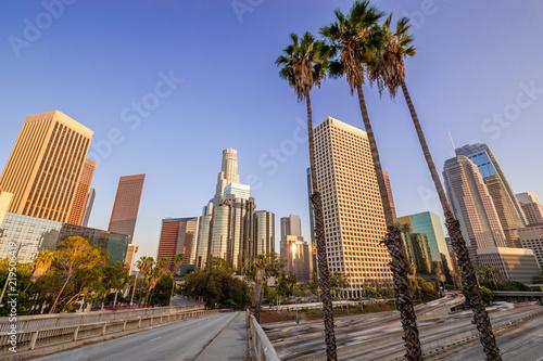 Fototapeta Los Angeles los-angeles-palmy-na-placu