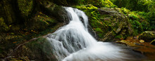 The Waterfall In The Forrest W...