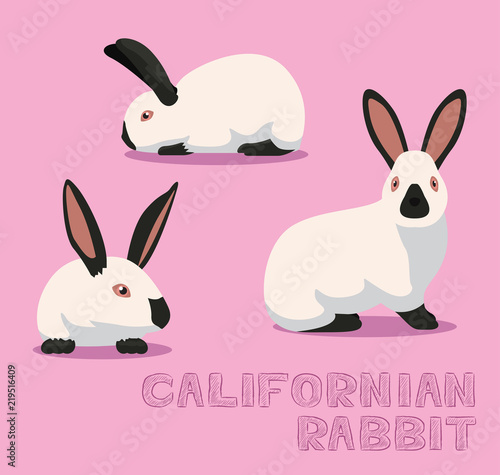 Obraz na plátně  Rabbit Californian Cartoon Vector Illustration