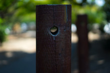 Weveral Wooden Strips In Garden