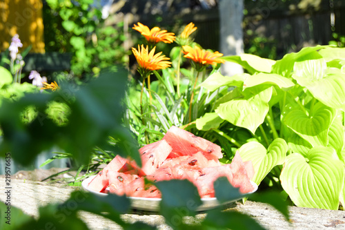 Fotografia, Obraz  the red ripened watermelon is on a plate against the background  of a grass and flowers