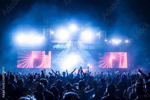 Carta da parati Crowd at electronic music festival