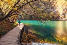 Croatia Nature Park Plitvice Lakes In Autumn - Boy Walks On Bridge Over The Lake