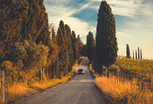Photo Typical Tuscany road along cypresses and vineyards
