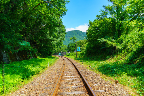 Foto op Canvas Spoorlijn 風景物語