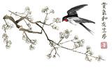 Połknij wiśniowe drzewo Sakura - 219628025