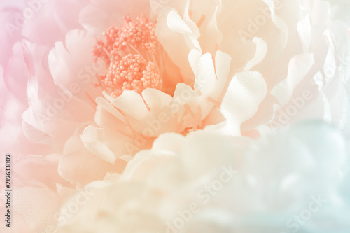 Door stickers Floral Chrysanthemum flowers in soft pastel color and blur style for background