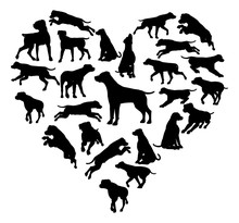 Labrador Retriever Dog Heart Silhouette Concept