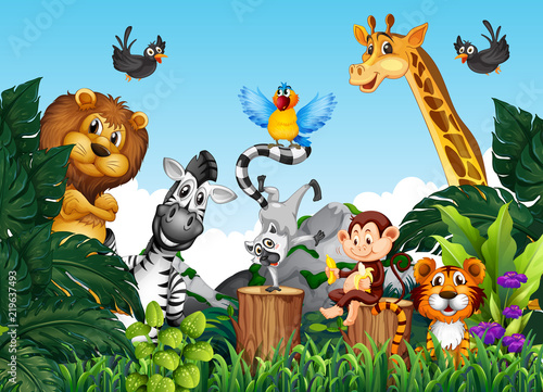 Photo Stands Kids Wild animals in the jungle