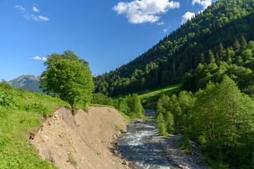 Fototapeta na wymiar Fast mountain river among mountain meadows. Stream of a mountain river. Mountain plateau in Abkhazia