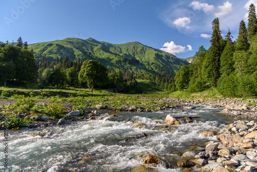 Fast mountain river among mountain meadows. Stream of a mountain river. Mountain plateau in Abkhazia