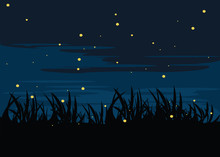 Firefly In Lake At Nights Back...