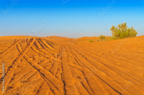 Desert Yellow Sand Dunes Landscape with Tire Tracks