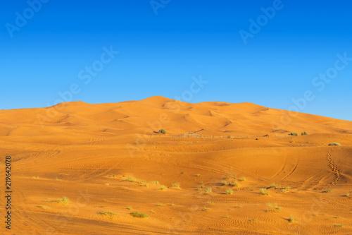 Desert Yellow Sand Dunes Landscape