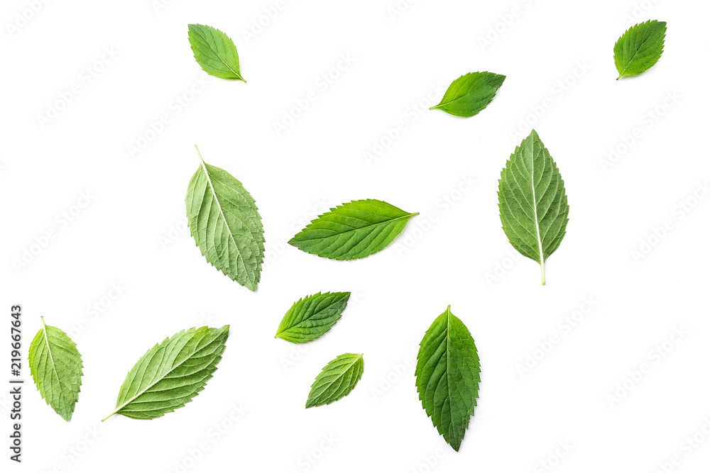 Flying mint leaves