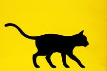 Black Cat Painted On Yellow Wa...