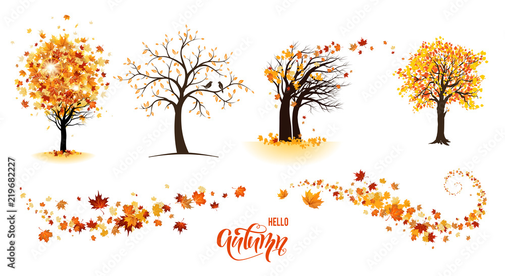 Fototapety, obrazy: Trees and leaves