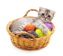 Kitten With Balls Of Yarn In The Basket.